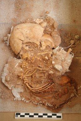 Imagen del feto encontrado en las excavaciones en La Vila Joiosa