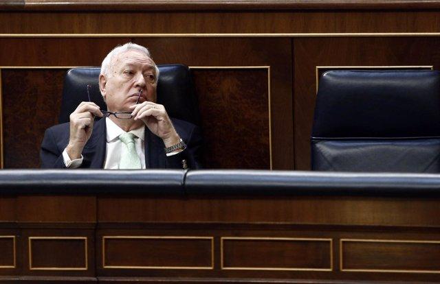 El ministro de Asuntos Exteriores, José Manuel García-Margallo, en el Congreso