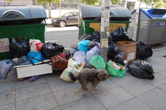 La basura se acumula en las calles de Sevilla.