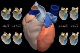 Atlas corazón