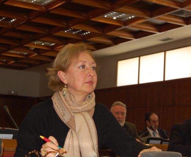 La senadora andaluza por el PSOE Fuensanta Coves