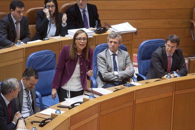 conselleira de Facenda no Pleno del Parlamentofoto