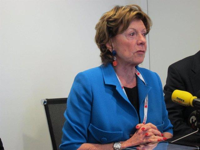 La vicepta. De la Comisión Europea Neelie Kroes