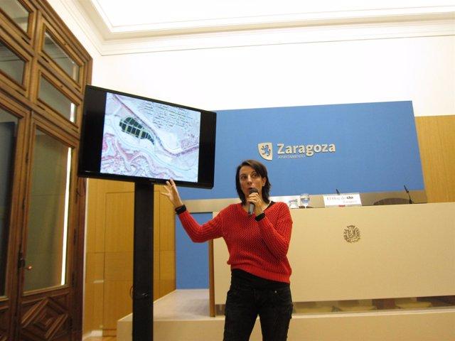 Leticia Crespo explica las enmiendas de CHA en materia de medio ambiente