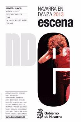 Cartel del programa Navarra en Danza 2013.