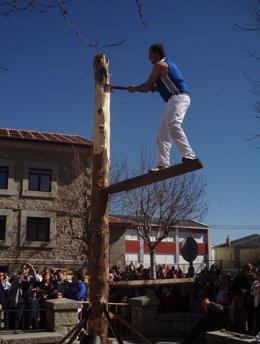 Fiesta de los Gabarreros en 2012