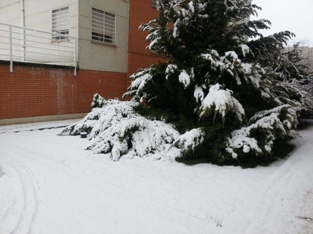 NIEVE EN CUENCA, TEMPORAL, FRÍO