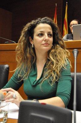 La directora general de Administración Local de Aragón, Paula Bardavío