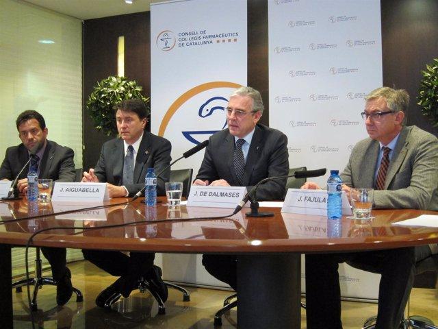 Presidentes de las colegios farmacéuticos de Catalunya