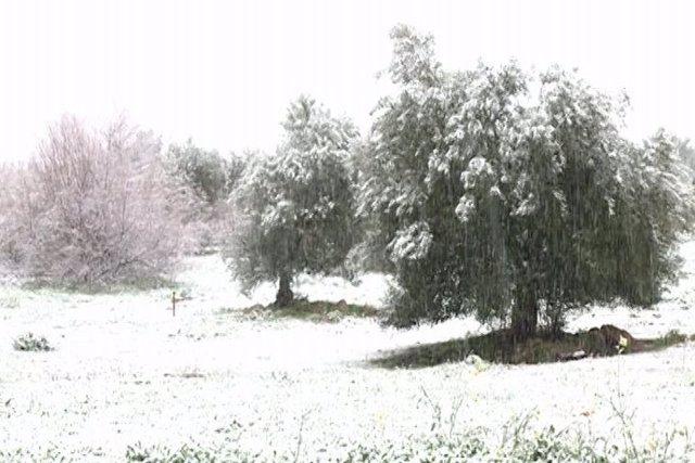 El sur de Badajoz teñido de blanco por la nieve