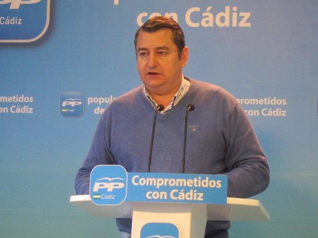 Antonio Sanz, presidente del PP en Cádiz