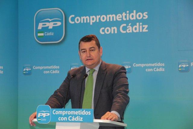Antonio Sanz, presidente provincial del PP de Cádiz