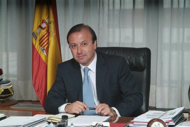 Joan Mesquida