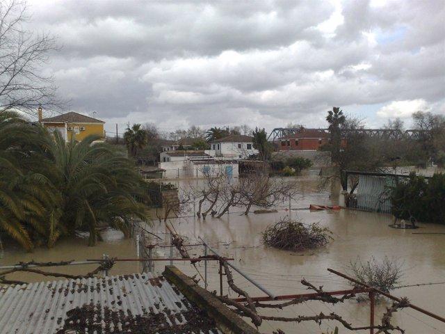 Parcelas de la capital inundadas en 2010