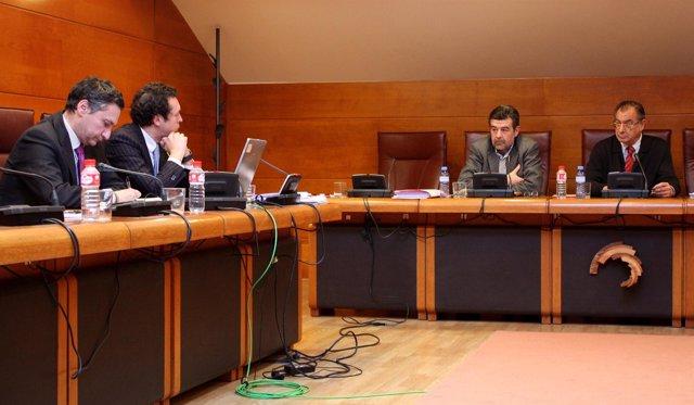 Agudo en la comisión de investigación de Cantur