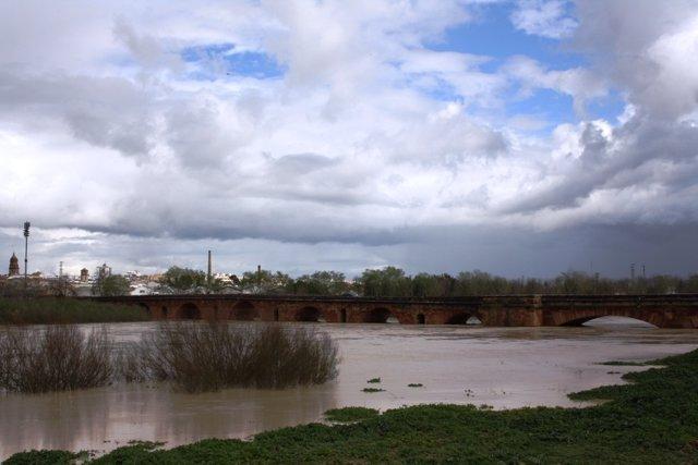 El Guadalquivir, a su paso por el Puente Romano de Andújar (13 de marzo de 2013)