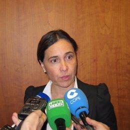 La consejera de Hacienda Dolores Carcedo