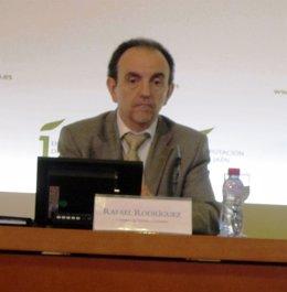 El consejero de Turismo, Rafael Rodríguez