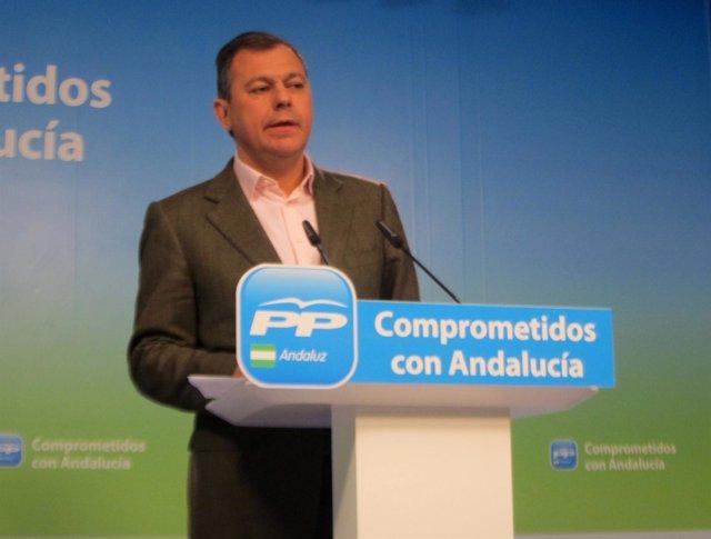 El se cretario general del PP-A, José Luis Sanz, hoy en rueda de prensa