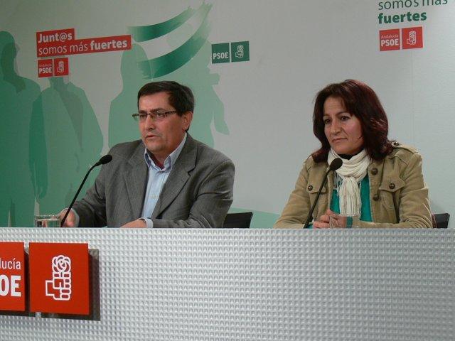 NP. PSOE Moción De Censura Cacín 20130315