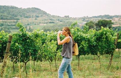 El paisaje cultural del vino y el viñedo de La Rioja', en la lista de bienes candidatos a Patrimonio Humanidad
