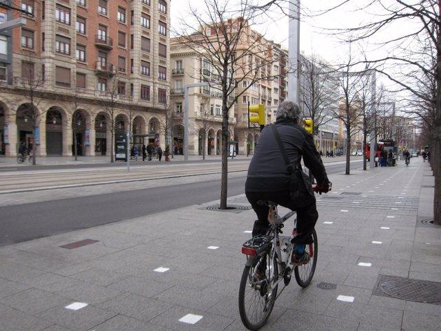 Un ciclista en el carril bici del Paseo de la Independencia de Zaragoza