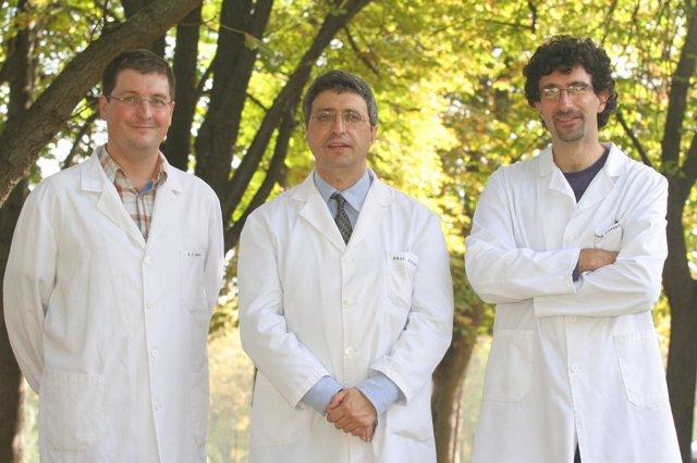 Los investigadores Javier Campión, Fermín Milagro y Alfredo Martínez.