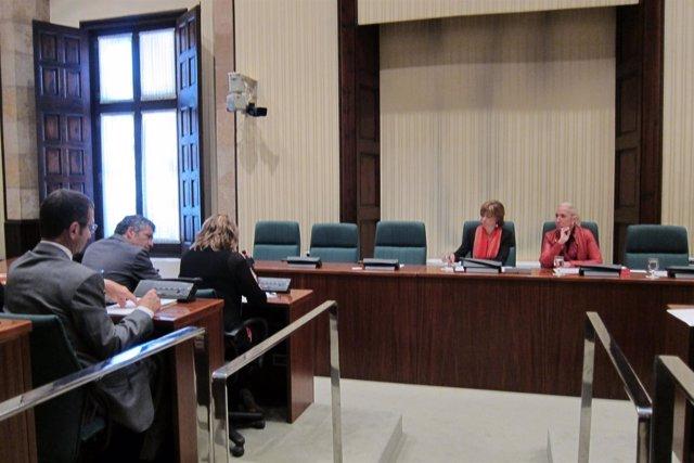 Constitucíon de la comisión de investigación sobre la gestión sanitaria