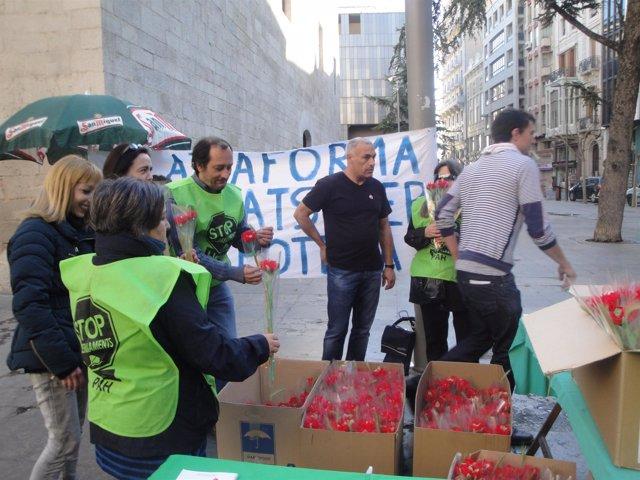 Puesto de venta de rosas de la PAH de Lleida