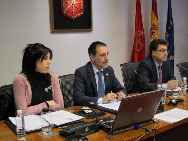 El presidente de Comptos, Helio Robleda, en comisión parlamentaria