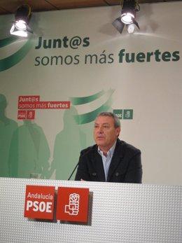 Álvarez de la Chica este sábado en rueda de prensa en Granada