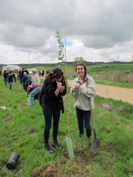 Jóvenes estadounidenses plantan árboles en el recorrido de la Marcha Asprona
