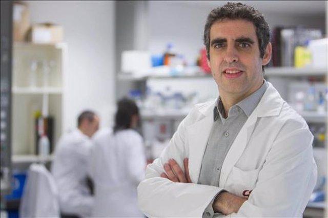 El investigador Icrea y profesor de genética Manel Esteller
