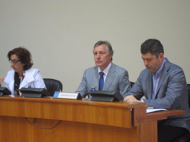 El director xeral de Relacións Parlamentarias en comisión