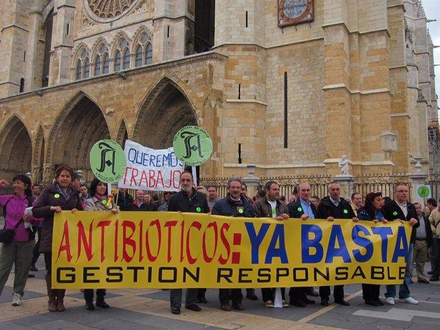 Trabajadores de antibióticos concentrados en la plaza de la Catedral de León