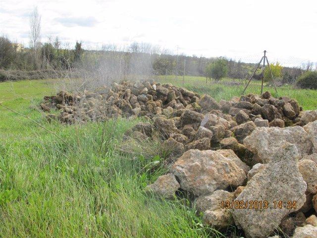 Restos recuperados por la Guardia Civil del Conjunto Histórico de Niebla.