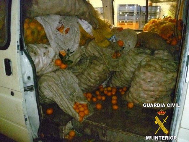 Naranjas intervenidas por la Guardia Civil