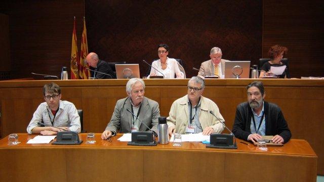 La Plataforma en Defensa de la Escuela Pública en las Cortes de Aragón