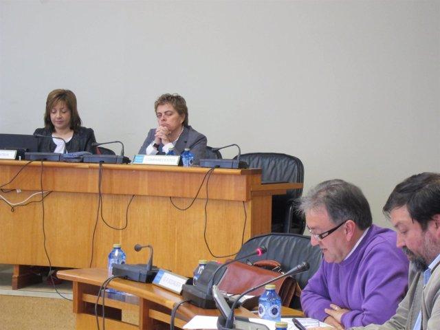 Ana María Díaz en comisión Parlamentaria