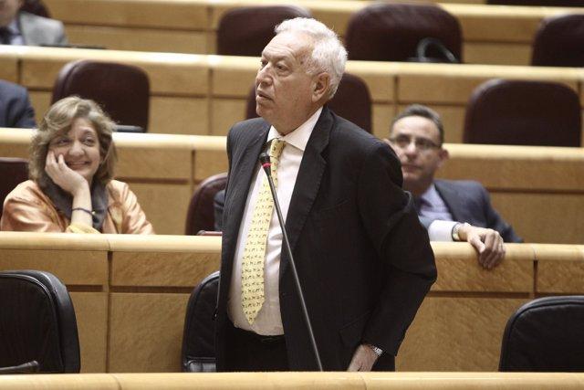 Jose Manuel García-Margallo