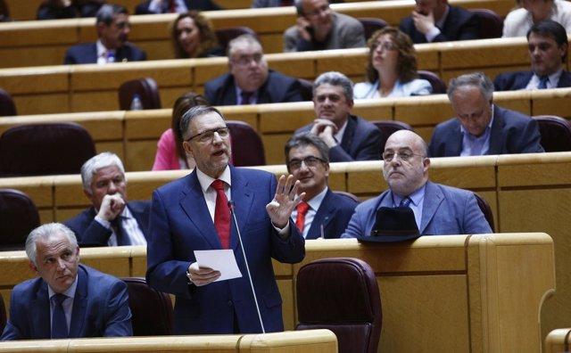 Marcelino Iglesias en el Pleno del Senado