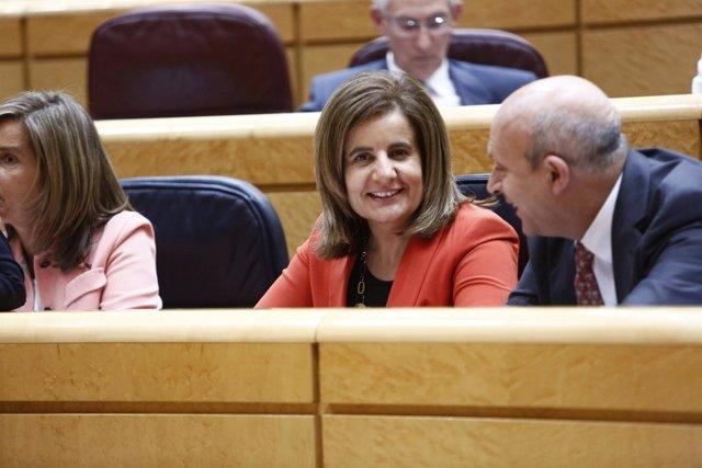 Fátima Báñez en el Pleno del Senado