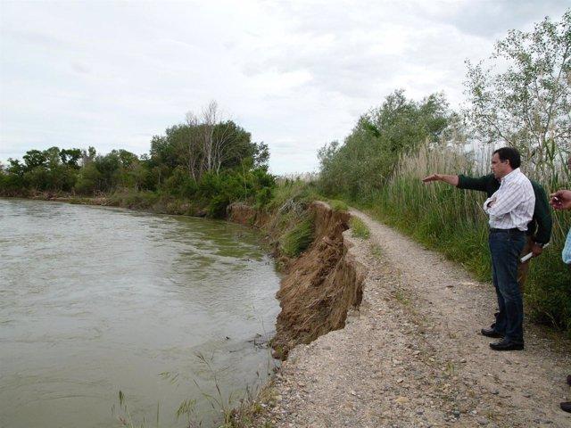 De Pedro contempla una mota en Pina de Ebro