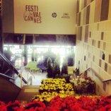 Preparaivos Cannes 2013