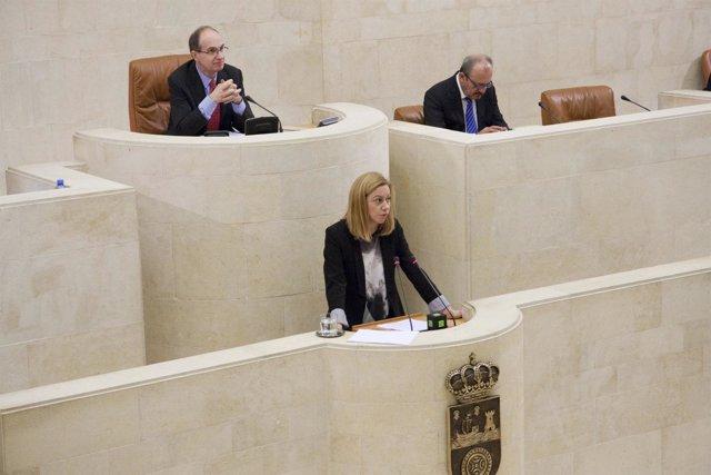 Pleno parlamento Mazas