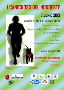Cartel anunciador del primer canicross de la Región de Murcia
