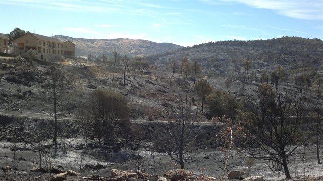 Incendio en la sierra oeste