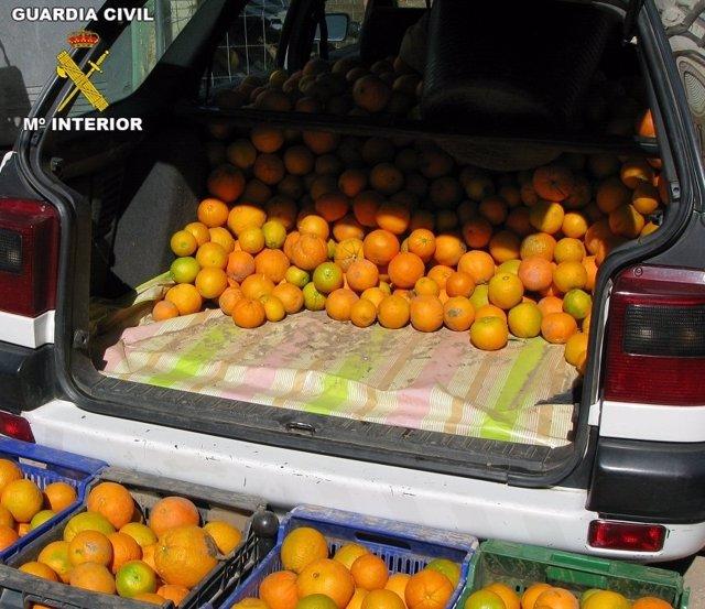 Naranjas recuperadas tras ser sustraídas
