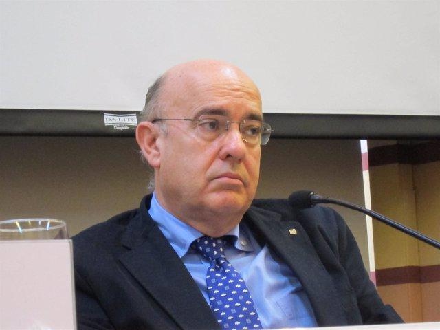 Conseller  Boi Ruiz (Archivo)