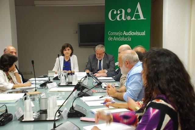 Joaquín Durán interviene ante el pleno del CAA